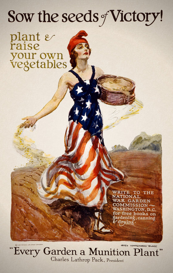 WWI Poster Sow The Seeds Of Victory! Plant & Raise Your Own Vegetables / James M
