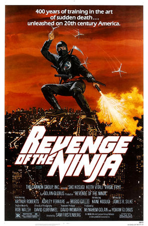 Revenge Of The Ninja Poster//Revenge Of The Ninja Movie Poster//Movie Poster//Poster Reprint