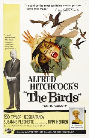 The Birds Poster//The Birds Movie Poster//Movie Poster//Poster Reprint