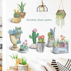 Cactus and Succulent Plants
