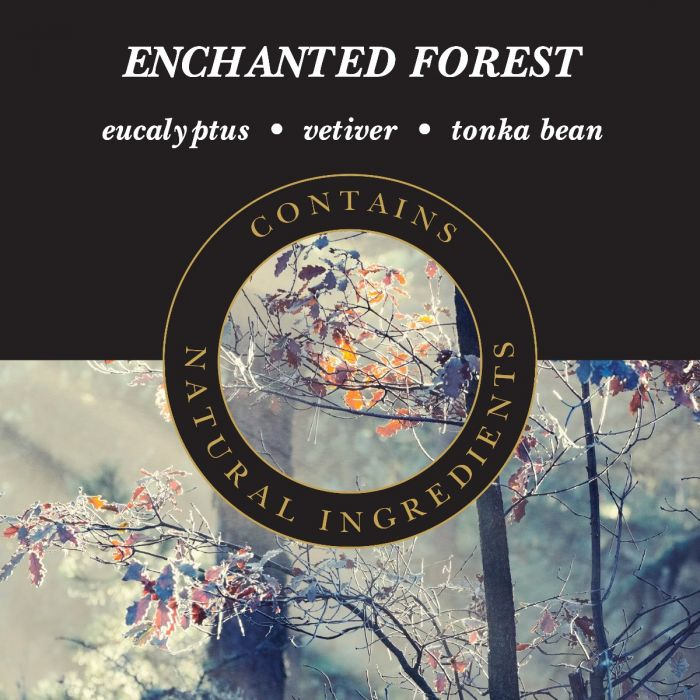 Enchanted Forest | Presentimes