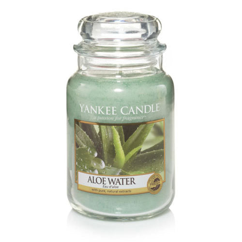 Classic Aloe Water Large Jar | Presentimes