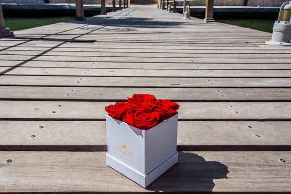 Eternity Roses - The Mini Square Preserved Rose Box - The Royal Roses Cayman