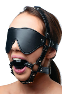Blindfold Harness and Ball Gag - TFA