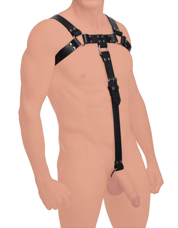 English Bull Dog Harness with Cock Strap - THE FETISH ACADEMY