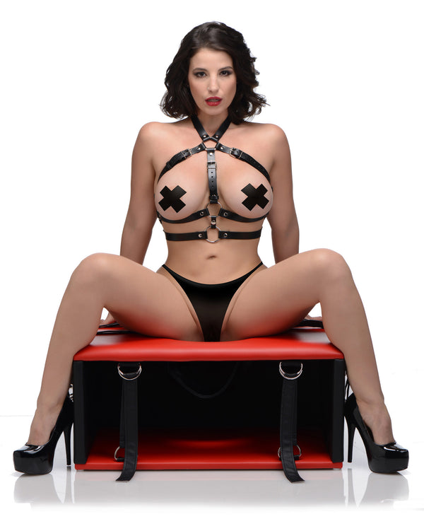 Queening Chair - THE FETISH ACADEMY