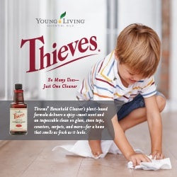 GLASS SPRAY BOTTLE & THIEVES HOUSEHOLD CLEANER made by Young Living