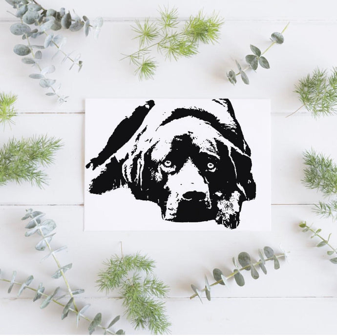 Personalised Pet Portrait Foil Photograph - PRINTS279