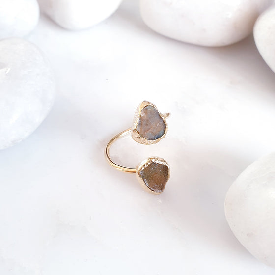 Forest Agate 2 stone Ring