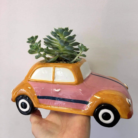 Planter with Live Succulent | Retro Bug | Ceramic