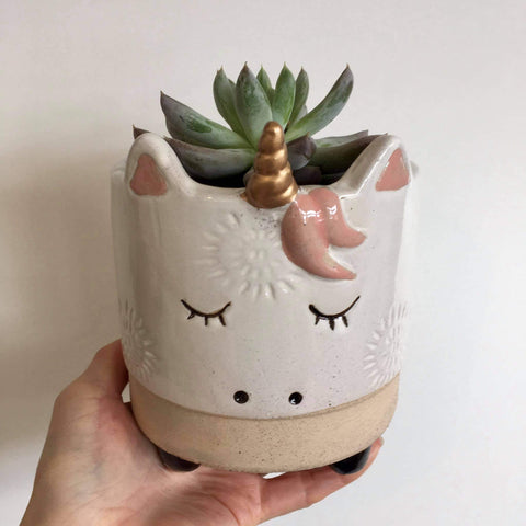 Planter with Live Succulent | Unicorn - Large #1 | Ceramic