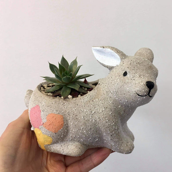 Planter with Live Succulent | Bunny #2 | Ceramic