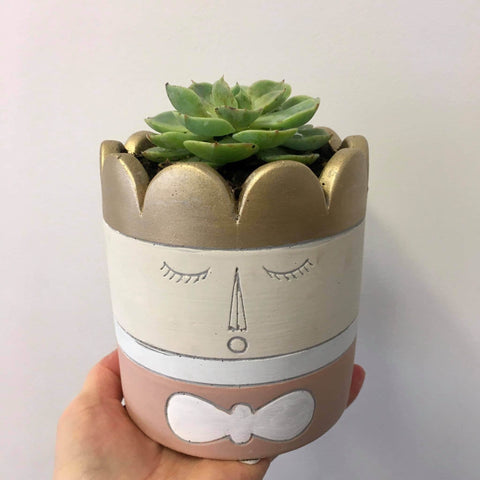 Planter with Live Succulent | Princess #2 | Stoneware