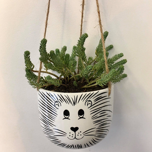Planter with Live Succulent | Hanging Lion - Large #1 | Ceramic