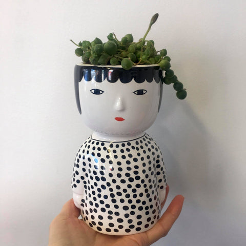 Planter with Live Succulent | The Spotted Lady | Ceramic