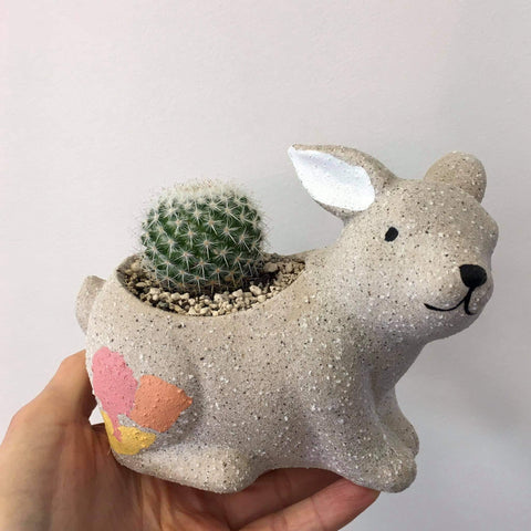 Planter with Live Cactus | Bunny #2 | Ceramic