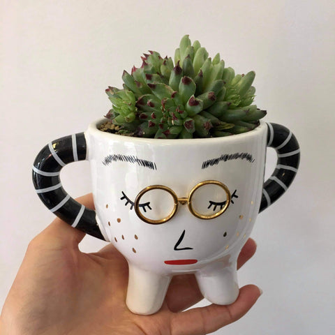Planter with Live Succulent | Lady Penny #1 | Ceramic