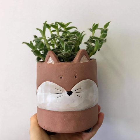 Planter with Live Succulent | Fox #2 | Stoneware