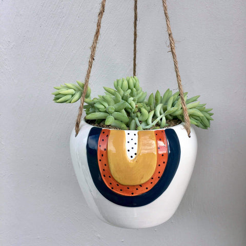 Planter with Burro's Tail Succulent | Woodstock Rainbow | Ceramic