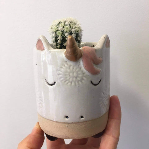 Planter with Live Cactus | Unicorn - small #1 | Ceramic