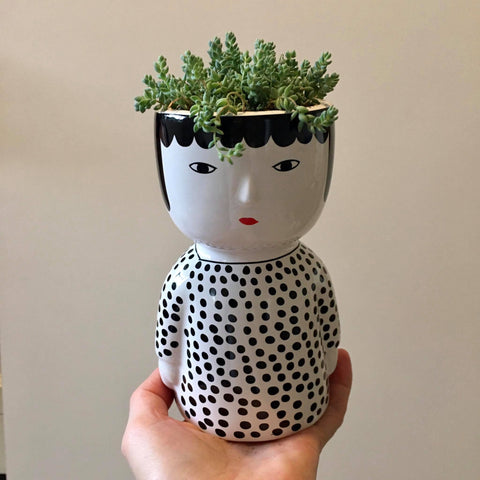 Planter with Live Succulent | The Spotted Lady #2 | Ceramic
