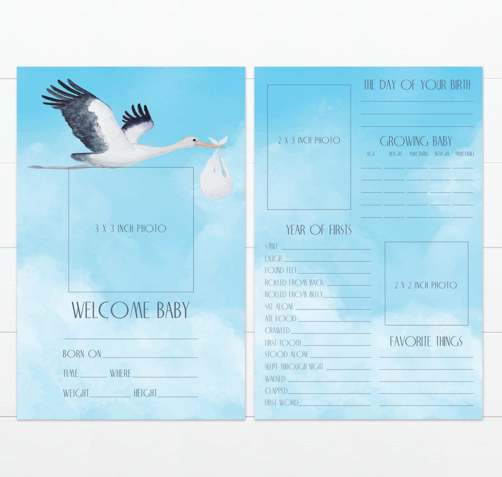 Baby's Greatest Hits Stork Design