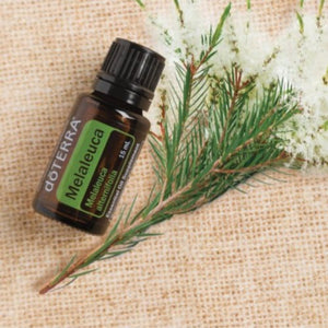 dōTERRA Melaleuca (Tea Tree) Essential Oil - 15ml