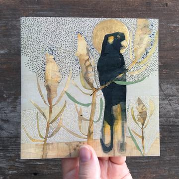 Dana Kinter Artist Card - Black Cockatoo & Banksia