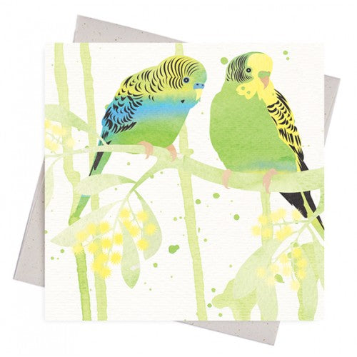 Earth Greetings Bush Budgies Gift Card