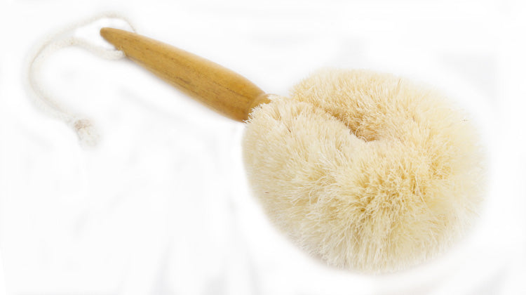 Eco Max Travel Brush