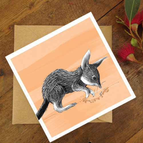 Renee Treml Little Bilby Card