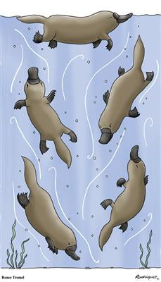 Renee Treml Platypus Linen Tea Towel