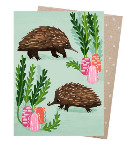 Earth Greetings Sarah Allen Short Beaked Echidnas Card