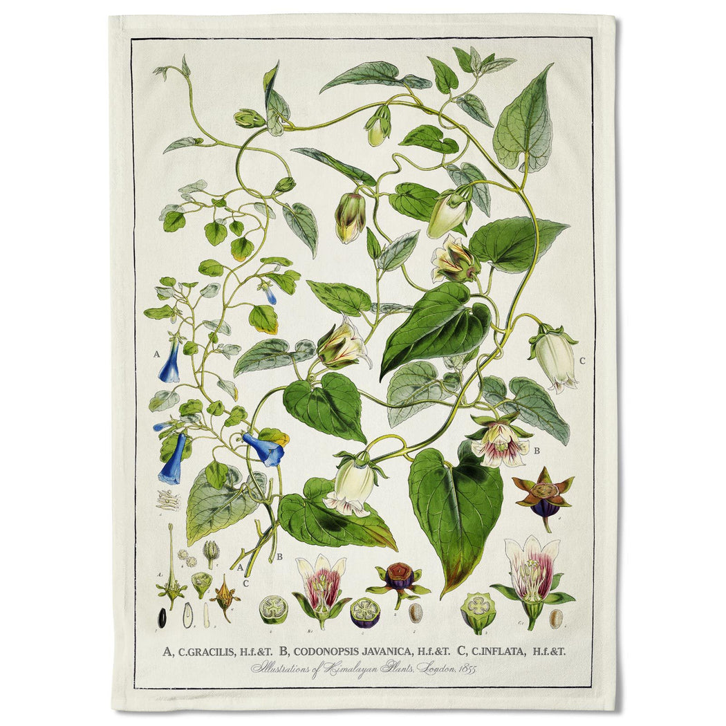 Vintage Bellflowers Tea Towel