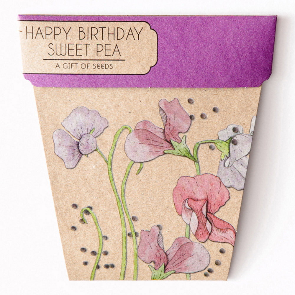 Sow 'n Sow Happy Birthday Sweet Pea Gift of Seeds