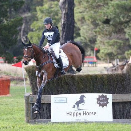 Can High Performance Horses Survive on Roughage Alone