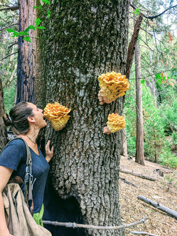 woman pretending to bite mushrooms on tree