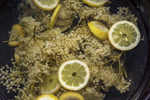 elderflower champagne cordial plum brilliance apothecary