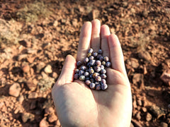 hand holding juniper berries