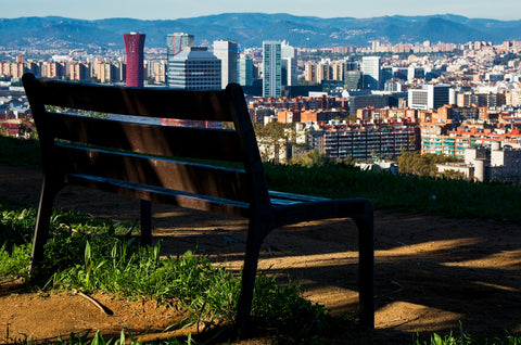 empty park bench overlooking a crowded city