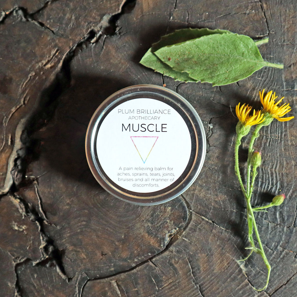 arnica natural pain relief balm