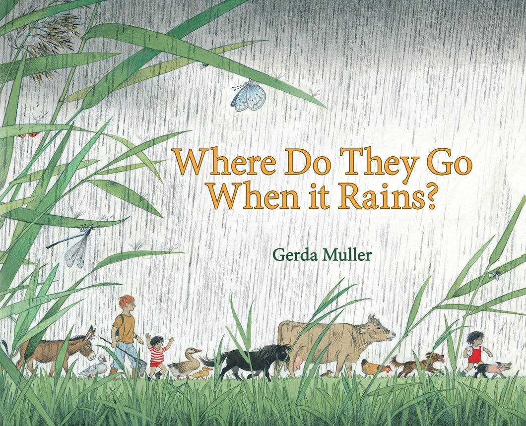 <i>Where Do They Go When It Rains?</i> by Gerda Muller