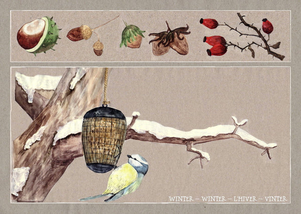 <i>Seasons on the Apple Tree</i> Postcard Collection by Judith Etzold