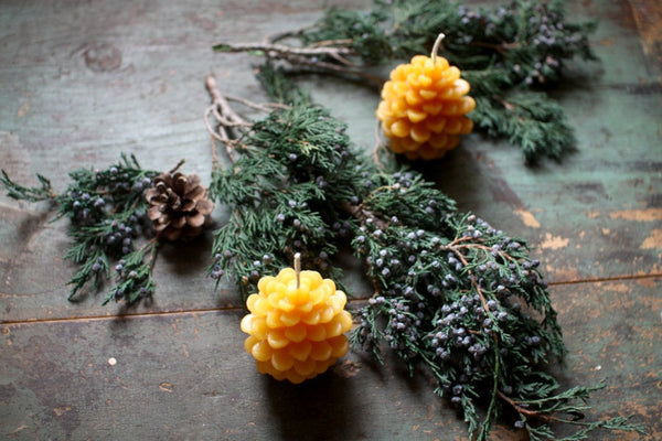 Beeswax Pine Cone Candles