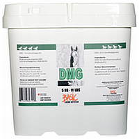 DMG (N,N-Dimethylglycine)