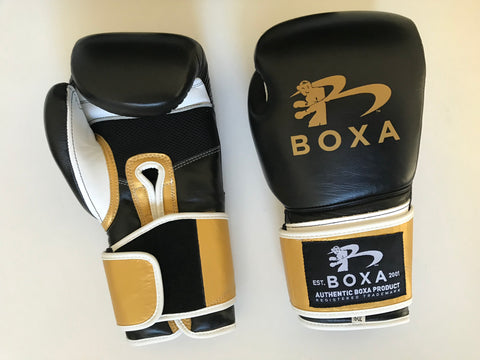 BOXA B1 PRO TRAINING BOXING GLOVES