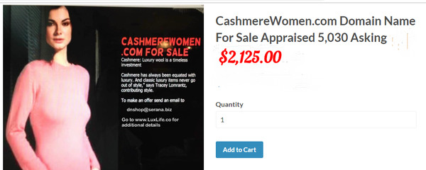 CashmereWomen.com  Offering Seller Financing