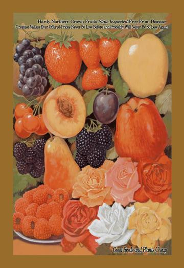 Hardy Northern Grown Fruits 12x18 Giclee on canvas