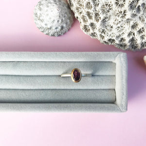 9ct gold and rhodolite garnet ring on silver shank, handmade jewellery by AB Jewellery, Goldsmith