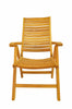 Anderson Teak | Carina 5-Position High-Back Teak Folding Recliner |CHR-118 -  Furniture - Teakwood Central